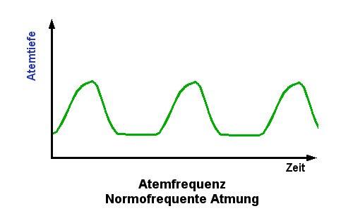 körpertemperatur messen vitalzeichen