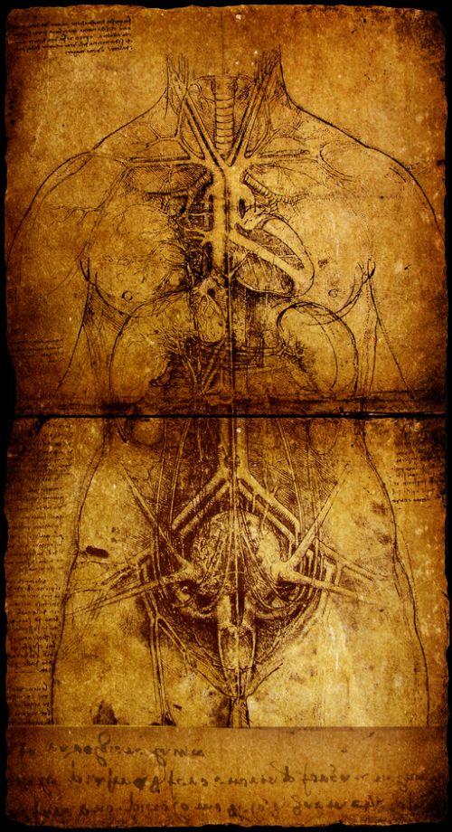 Menschenbild, Leonardo da Vinci
